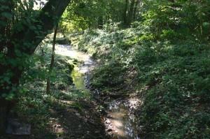Hantenweg-Wirtzbach