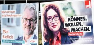 Buchhahn vs Griefholz